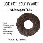 eucalyptus krans 25 cm