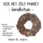 landlotus bruin krans 30 cm
